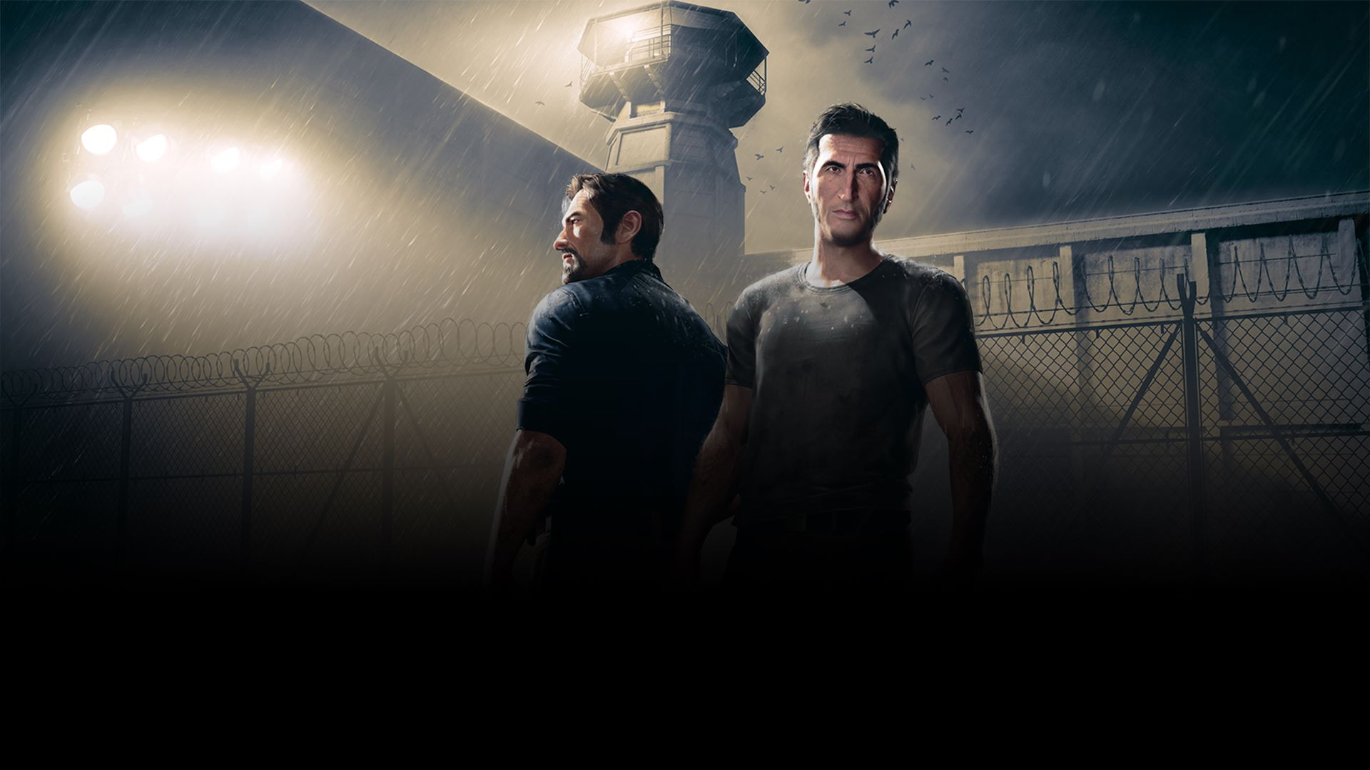 buy a way out microsoft store en ca
