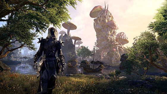 The Elder Scrolls® Online screenshot 2