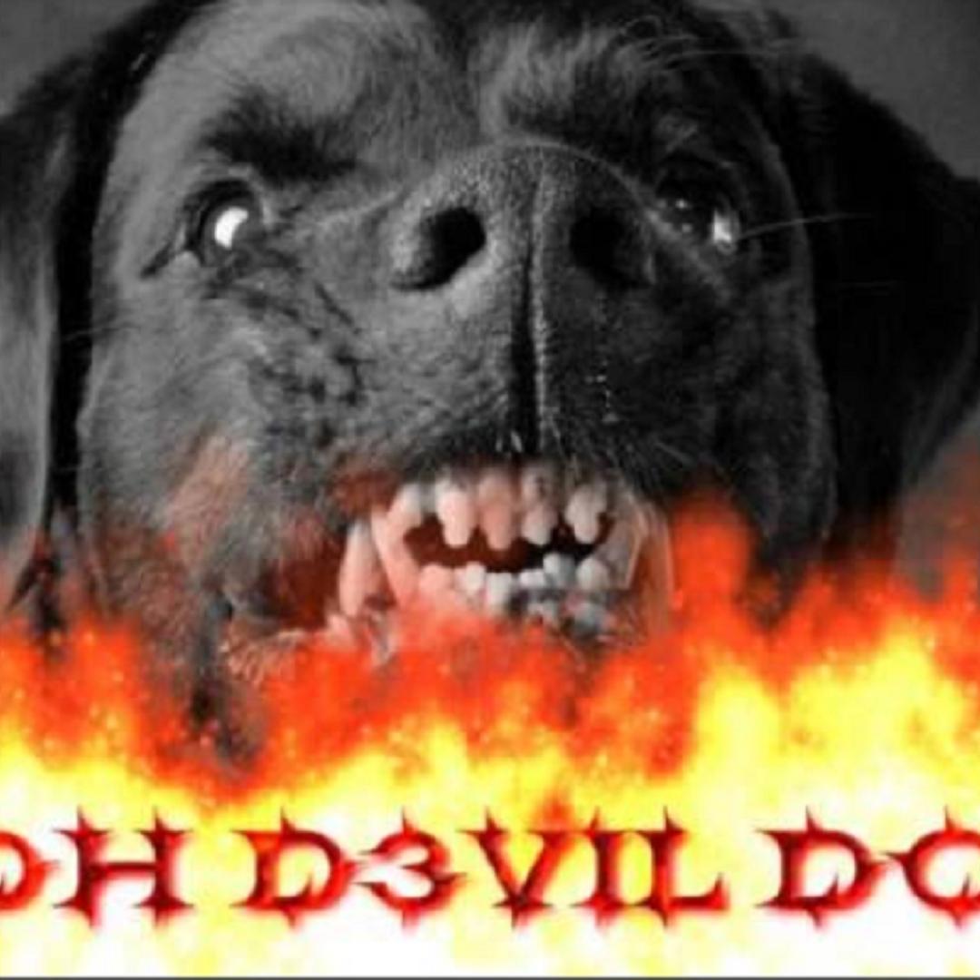 D3VlL DOG