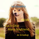 Taydoge Swift
